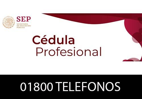 Dirección General de Profesiones Teléfono