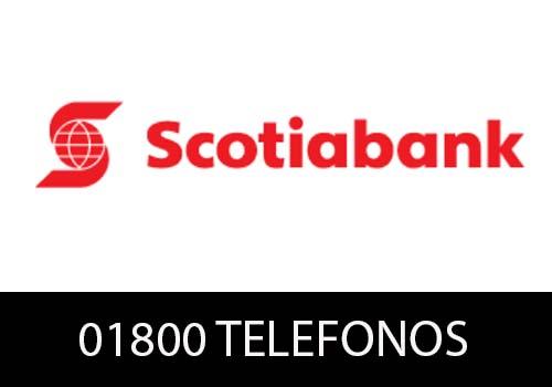 Scotiabank Teléfono