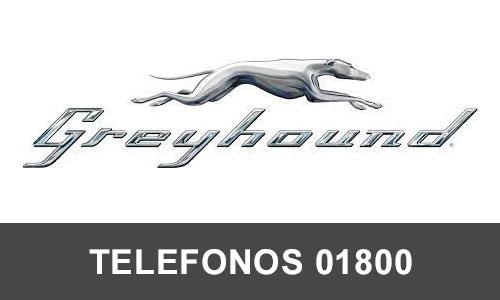 Grehound telefono atención al cliente
